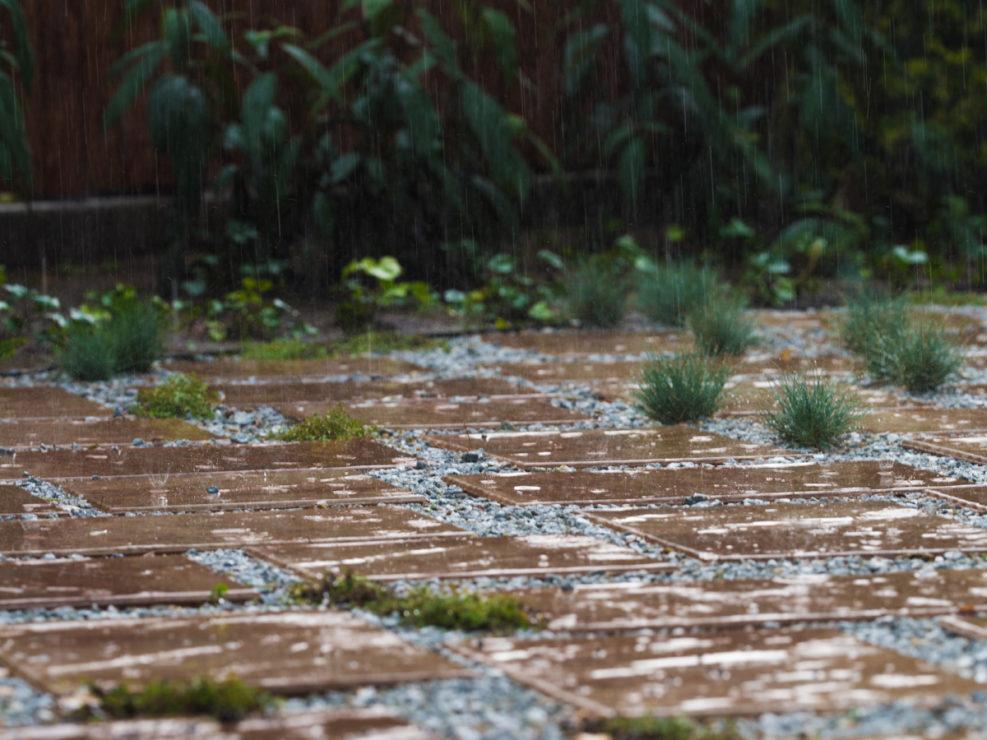 płyty w deszczu