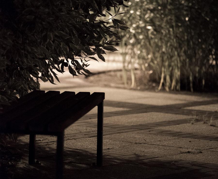 teren wieczorem