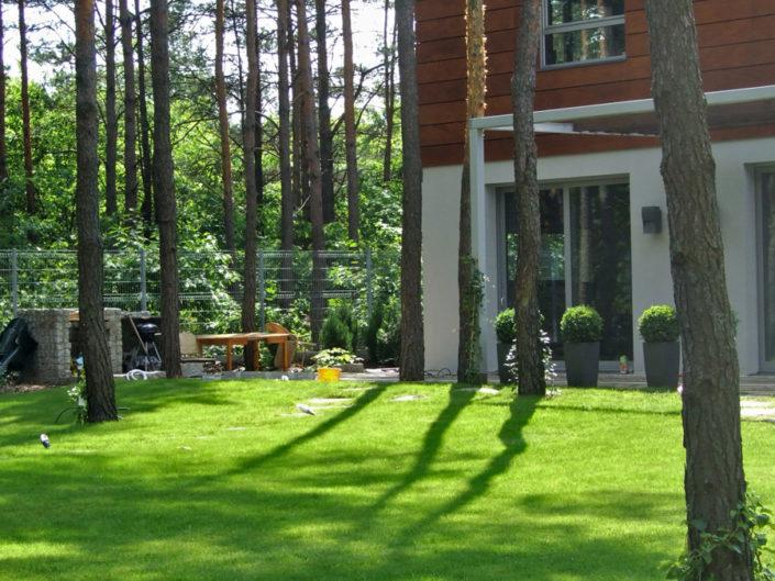 trawnik w lesie przy nowoczesnym domu