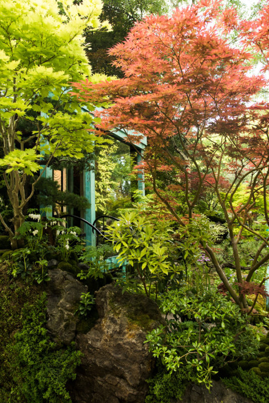 ogrod pokazowy