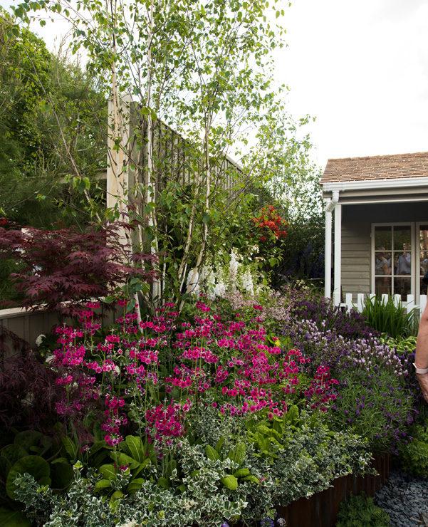 ogrod bylinowy