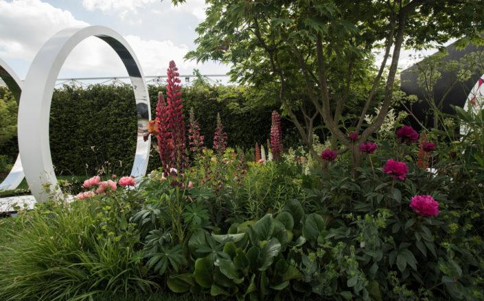 sztywne elementy w ogrodzie